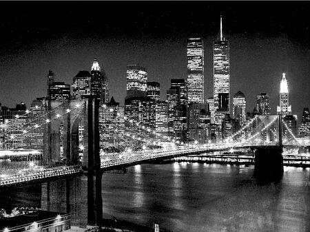 Silbermann-henri-brooklyn-bridge-4800186